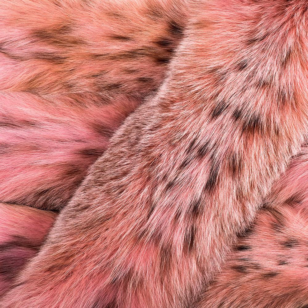 Канадская рысь крашеная в розовый