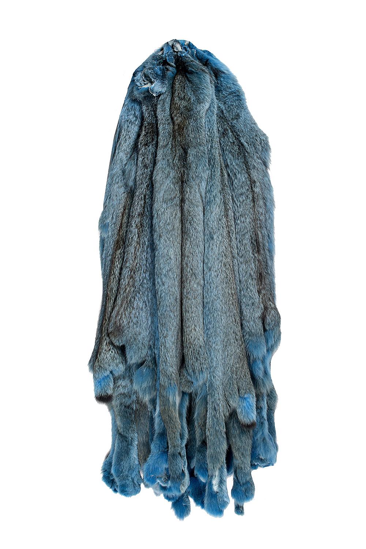 Канадская рысь крашеная в синий