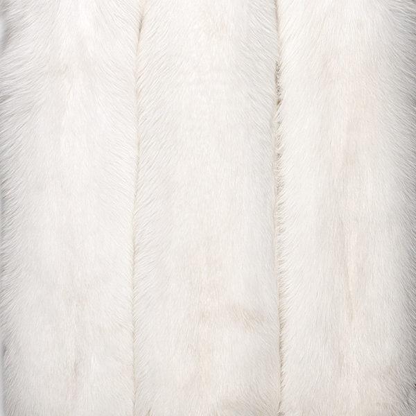 Песец Белый (White Fox)