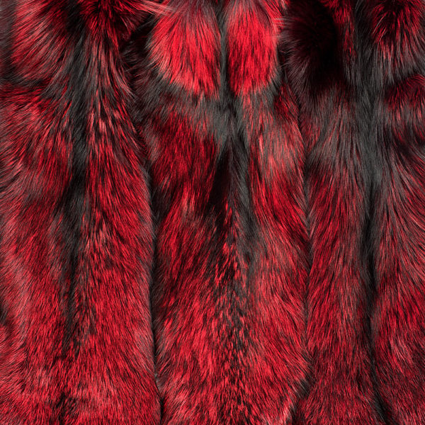 Лиса Silver Fox Red